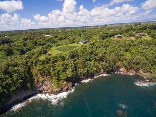 27-604 Alakahi Pl, Papaikou, HI 96781 (MLS #624939) :: Song Real Estate Team/Keller Williams Realty Kauai