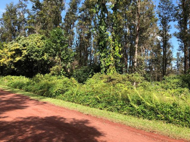 Coral Dr, Pahoa, HI 96778 (MLS #624950) :: Elite Pacific Properties