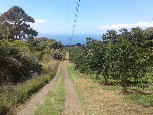 79-7405 Hawaii Belt Rd, Kealakekua, HI 96750 (MLS #624952) :: Elite Pacific Properties