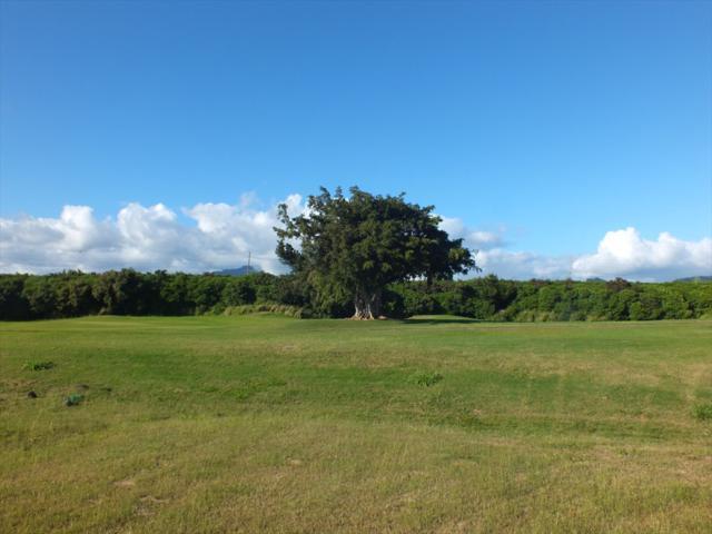 2918 Kolepa St, Koloa, HI 96756 (MLS #624984) :: Kauai Exclusive Realty