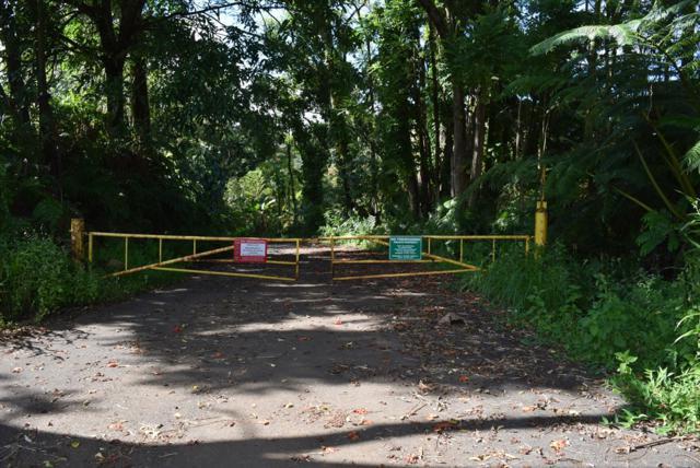 Address Not Published, Hilo, HI 96720 (MLS #624990) :: Aloha Kona Realty, Inc.