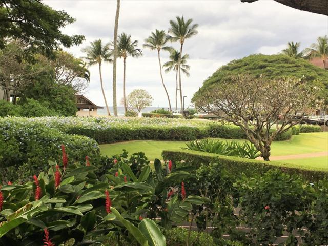 2253 Poipu Rd, Koloa, HI 96756 (MLS #625001) :: Elite Pacific Properties