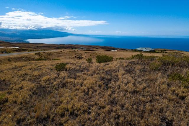 Kamakani Lp, Kapaau, HI 96755 (MLS #625048) :: Aloha Kona Realty, Inc.