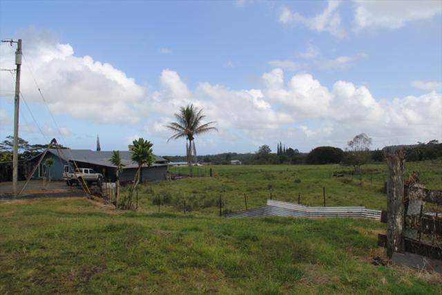 133 Alawaena St, Hilo, HI 96720 (MLS #625083) :: Aloha Kona Realty, Inc.