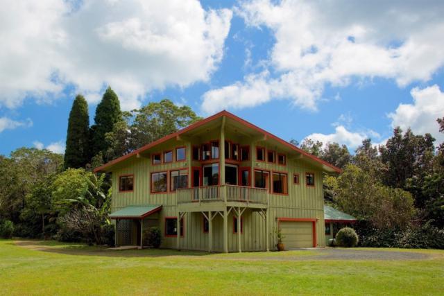 19-4311 Wright Rd, Volcano, HI 96785 (MLS #625214) :: Aloha Kona Realty, Inc.