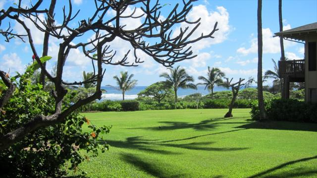 4460 Nehe Rd, Lihue, HI 96766 (MLS #625408) :: Kauai Exclusive Realty