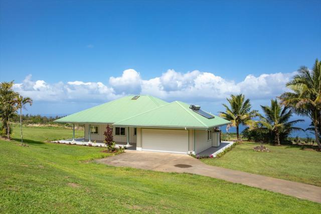 44-2580 Kalopa Rd, Honokaa, HI 96727 (MLS #625481) :: Aloha Kona Realty, Inc.