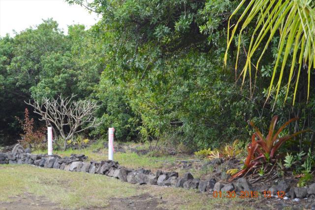 Address Not Published, Naalehu, HI 96772 (MLS #625558) :: Song Real Estate Team/Keller Williams Realty Kauai