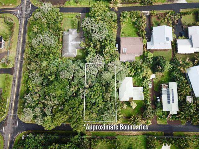 S Papai St, Pahoa, HI 96778 (MLS #625584) :: Elite Pacific Properties