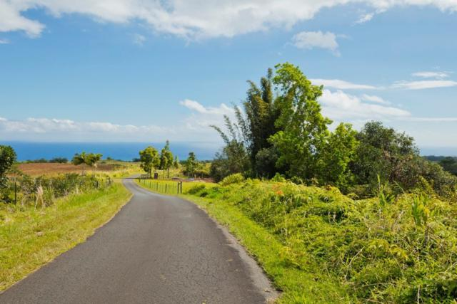 Kamaee Road, Hakalau, HI 96710 (MLS #625689) :: Elite Pacific Properties
