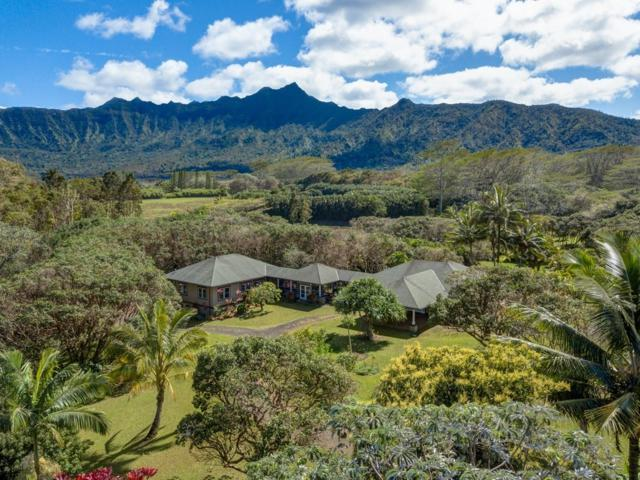 6040-C Kahiliholo Rd, Kilauea, HI 96754 (MLS #625763) :: Song Real Estate Team/Keller Williams Realty Kauai