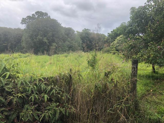 18-4325 N Peck Rd, Volcano, HI 96785 (MLS #625784) :: Song Real Estate Team/Keller Williams Realty Kauai