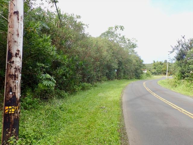 Address Not Published, Kurtistown, HI 96760 (MLS #625806) :: Song Real Estate Team/Keller Williams Realty Kauai