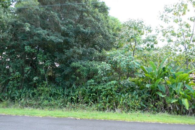 N Aholehole St, Pahoa, HI 96778 (MLS #625893) :: Elite Pacific Properties