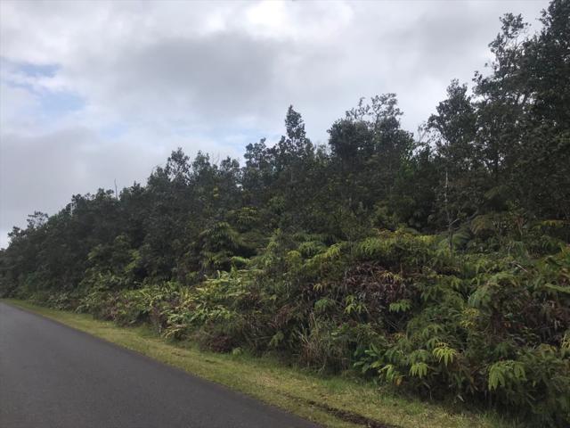 Nahelenani, Volcano, HI 96785 (MLS #625935) :: Aloha Kona Realty, Inc.