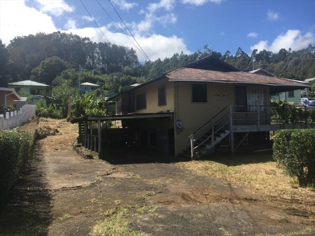 45-3687 Hau St, Honokaa, HI 96727 (MLS #626005) :: Aloha Kona Realty, Inc.