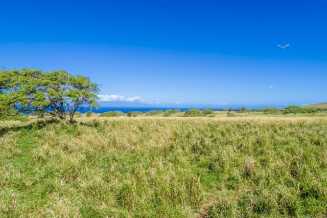 Puakea Dr, Hawi, HI 96719 (MLS #626029) :: Song Real Estate Team/Keller Williams Realty Kauai