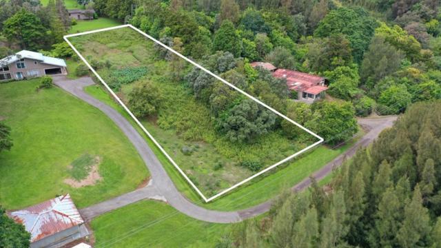 Address Not Published, Honokaa, HI 96727 (MLS #626308) :: Song Real Estate Team | LUVA Real Estate
