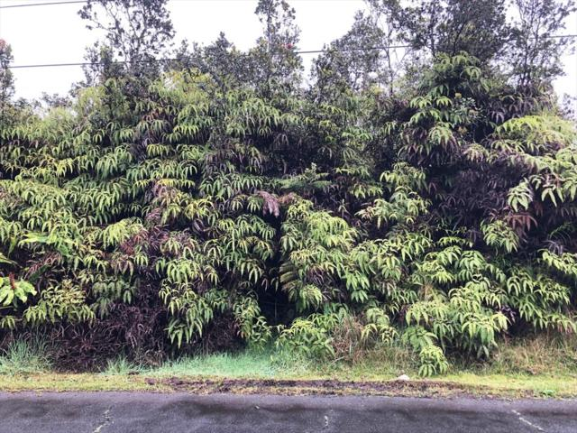 Address Not Published, Volcano, HI 96785 (MLS #626318) :: Elite Pacific Properties