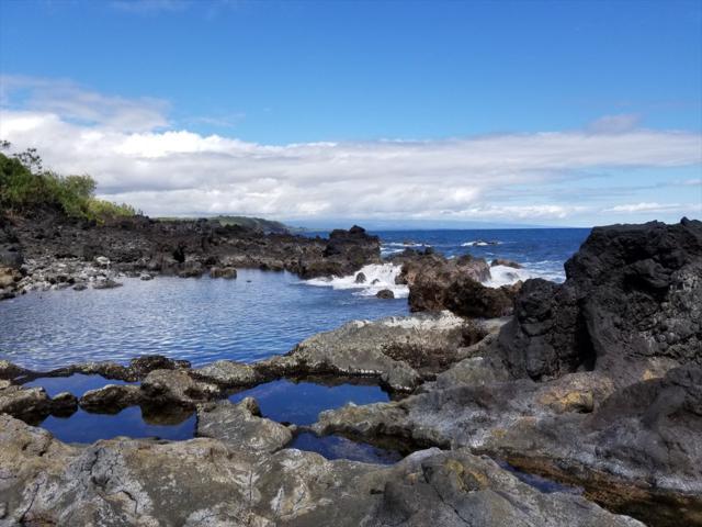 Government Beach Rd, Pahoa, HI 96778 (MLS #626362) :: Aloha Kona Realty, Inc.