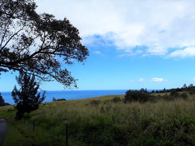 35-145 Ochiro Camp Rd, Laupahoehoe, HI 96764 (MLS #626363) :: Song Real Estate Team/Keller Williams Realty Kauai