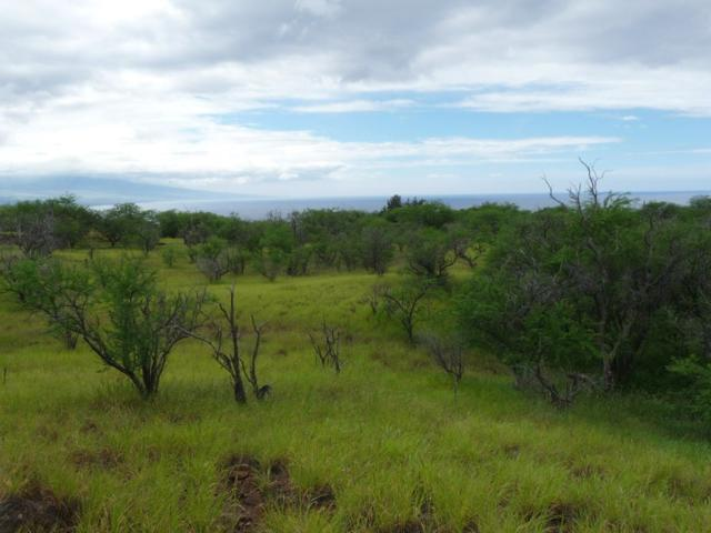 Address Not Published, Kamuela, HI 96743 (MLS #626375) :: Aloha Kona Realty, Inc.