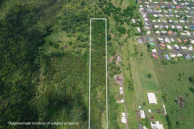 Address Not Published, Hilo, HI 96720 (MLS #626472) :: Aloha Kona Realty, Inc.