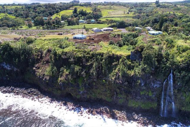 32-2619 Pali Ku Place, Ninole, HI 96780 (MLS #626485) :: Aloha Kona Realty, Inc.