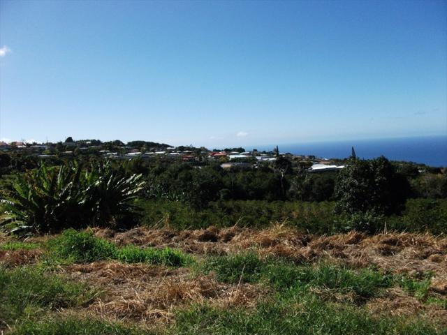 79-995 Kealaola Rd, Kealakekua, HI 96750 (MLS #626517) :: Aloha Kona Realty, Inc.