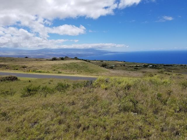 Address Not Published, Kapaau, HI 96743 (MLS #626745) :: Aloha Kona Realty, Inc.