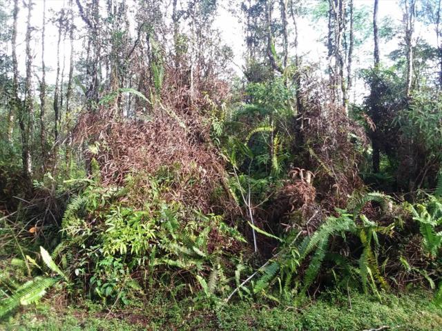 Mauna Kea Rd, Pahoa, HI 96778 (MLS #626781) :: Aloha Kona Realty, Inc.