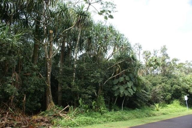 S Moi St, Pahoa, HI 96778 (MLS #626837) :: Aloha Kona Realty, Inc.