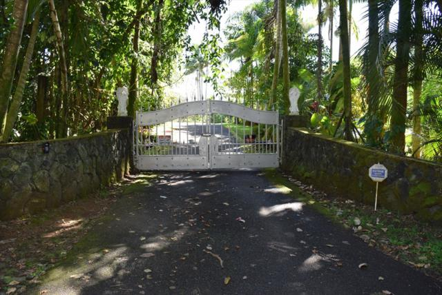 27-996-A Old Mamalahoa Hwy, Pepeekeo, HI 96783 (MLS #627010) :: Elite Pacific Properties