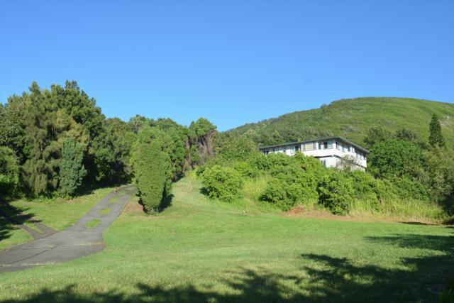 94-6256 Mamalahoa Hwy, Naalehu, HI 96772 (MLS #627069) :: Elite Pacific Properties