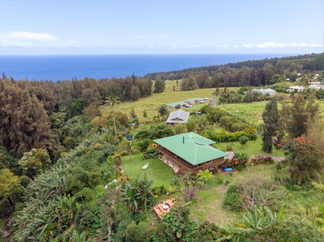 43-419 Hale Hookipa Pl, Paauilo, HI 96776 (MLS #627114) :: Song Real Estate Team/Keller Williams Realty Kauai