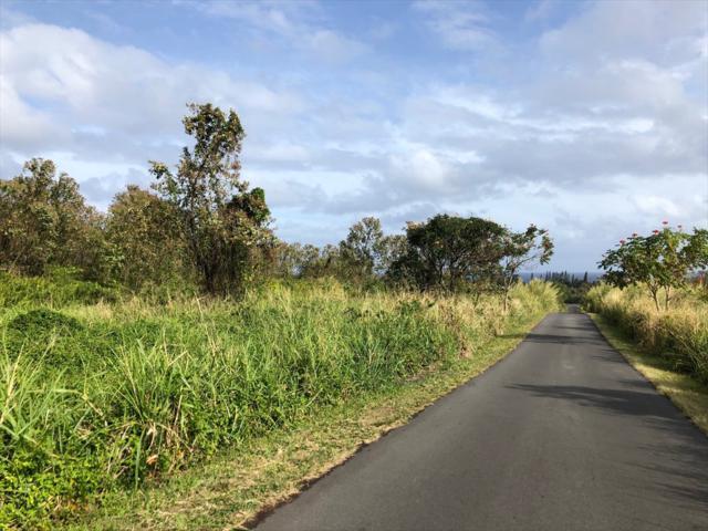 Address Not Published, Pahoa, HI 96778 (MLS #627203) :: Aloha Kona Realty, Inc.