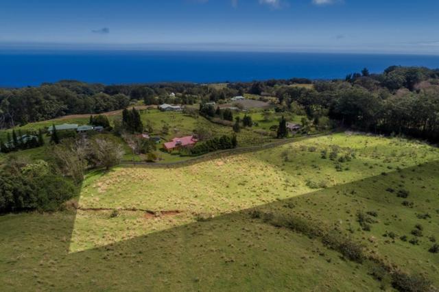 Address Not Published, Honokaa, HI 96727 (MLS #627204) :: Aloha Kona Realty, Inc.