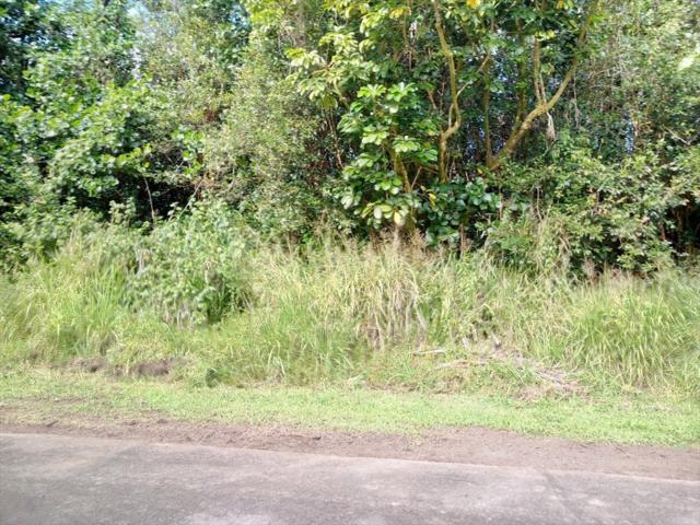 S Aweoweo St, Pahoa, HI 96778 (MLS #627210) :: Elite Pacific Properties