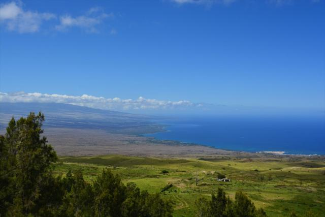 62-2741-A Kohala Mountain Rd, Kamuela, HI 96743 (MLS #627307) :: Aloha Kona Realty, Inc.