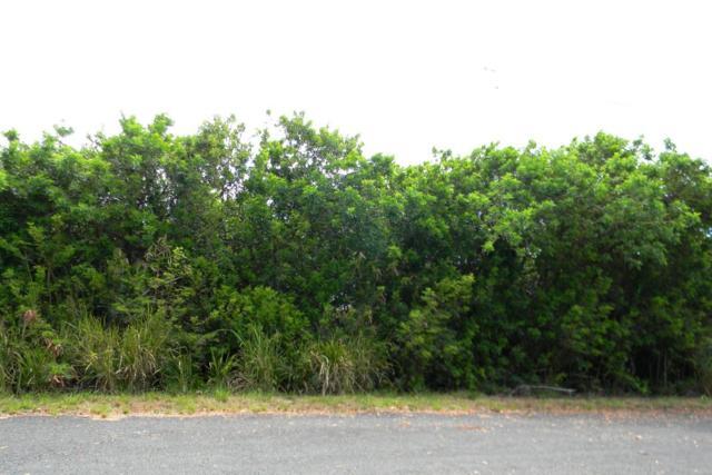 Kia Kahi Pl, Naalehu, HI 96772 (MLS #627353) :: Song Real Estate Team/Keller Williams Realty Kauai