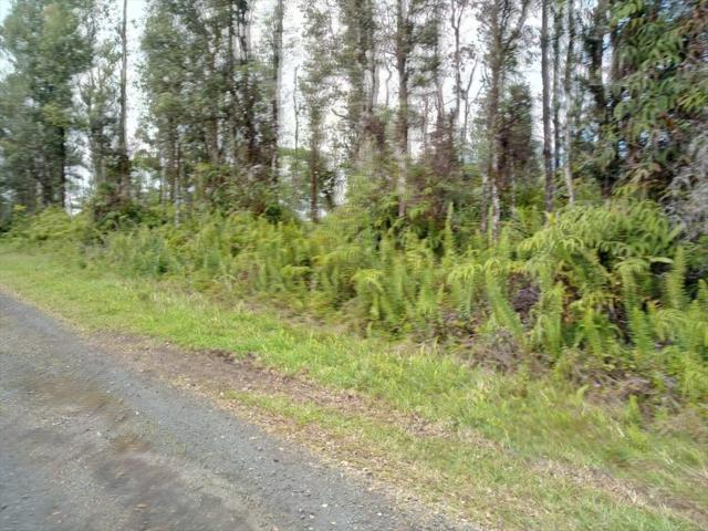 Shell Rd, Pahoa, HI 96778 (MLS #627424) :: Aloha Kona Realty, Inc.