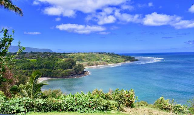 2991-C Kaohe Rd, Kilauea, HI 96754 (MLS #627521) :: Kauai Exclusive Realty