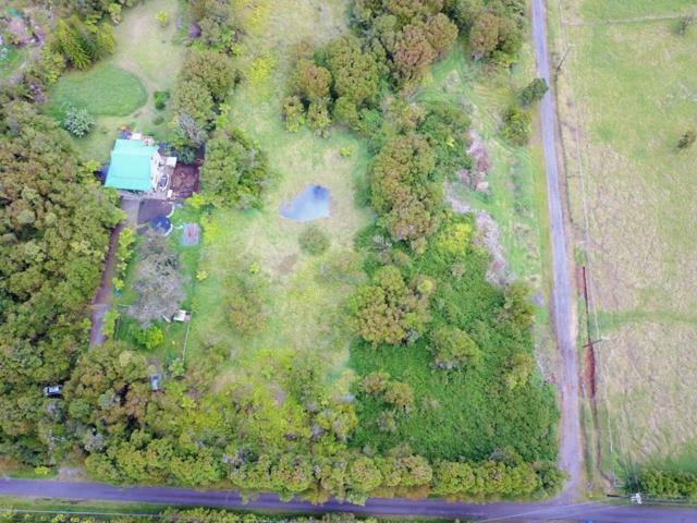 18-4255 N N Glenwood Rd, Volcano, HI 96785 (MLS #627694) :: Elite Pacific Properties