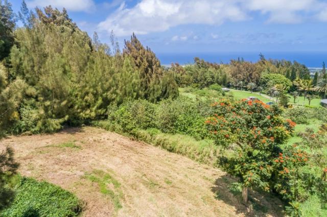 Address Not Published, Hawi, HI 96719 (MLS #627709) :: Aloha Kona Realty, Inc.