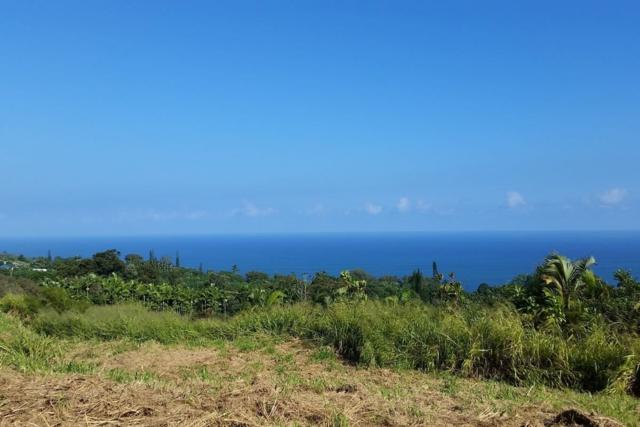 Address Not Published, Laupahoehoe, HI 96764 (MLS #627729) :: Song Real Estate Team | LUVA Real Estate