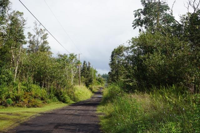 39TH AVE, Keaau, HI 96760 (MLS #627933) :: Aloha Kona Realty, Inc.