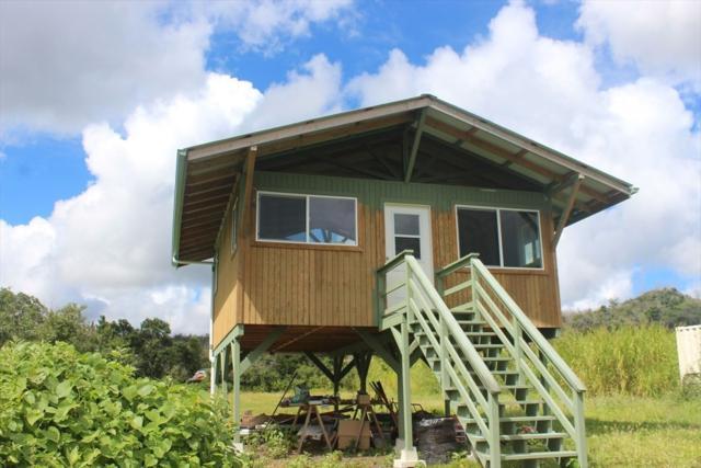 Opihikau Rd, Pahoa, HI 96778 (MLS #627970) :: Elite Pacific Properties