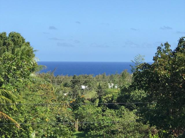 12-231 Oliana Dr, Pahoa, HI 96778 (MLS #627974) :: Song Real Estate Team | LUVA Real Estate