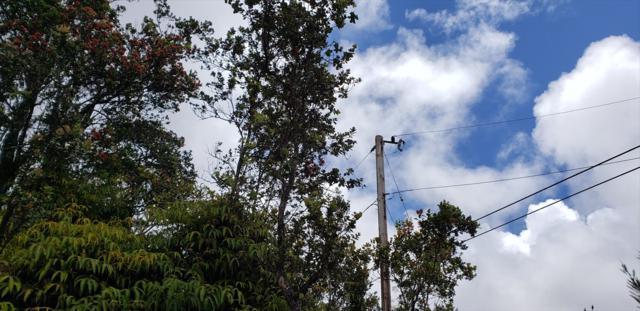 Eleventh St/Jade Ave, Volcano, HI 96785 (MLS #627999) :: Aloha Kona Realty, Inc.