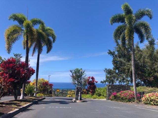 75-6138 Akoa St, Kailua-Kona, HI 96740 (MLS #628023) :: Team Lally